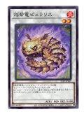 焔紫竜ピュラリス Normal