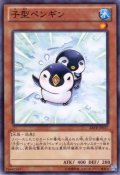 子型ペンギン N-Rare