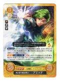 風と雷の魔法戦士 アミッド