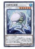 白闘気海豚(ホワイト・オーラ・ドルフィン) Super