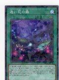 迷い花の森 N-Parallel