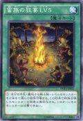 蛮族の狂宴LV5