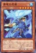 青竜の忍者