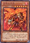 赤竜の忍者 Rare