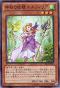 神秘の妖精 エルフィリア Super