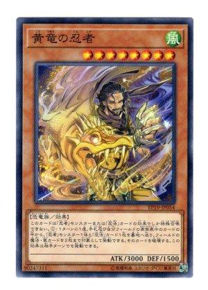 画像1: 黄竜の忍者