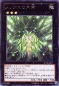 メリアスの木霊 Rare