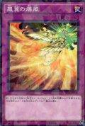 鳳翼の爆風  N-Parallel