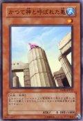 かつて神と呼ばれた亀 N-Rare